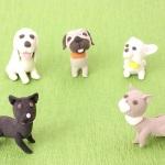 犬の小物達