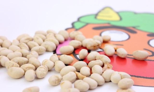節分の大豆