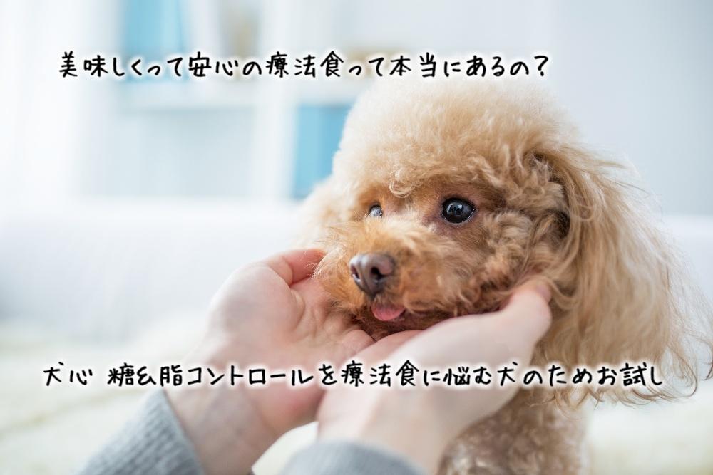 犬心 糖&施コントロール療法食の良い口コミ・悪い口コミ